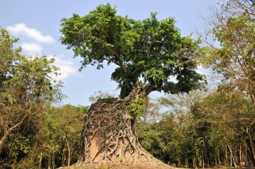 10 ruinas arqueológicas fabulosas (y que no son tan típicas) 6a0147e27414f5970b01a73d721911970d-500wi